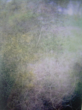 m_ivarsdotter_Transformation VI_2012.jpg